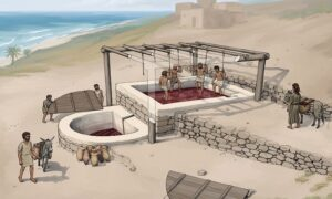A 2,600 year old winery is unearthed